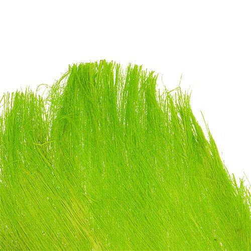 Fibre de palmier 400 g vert clair