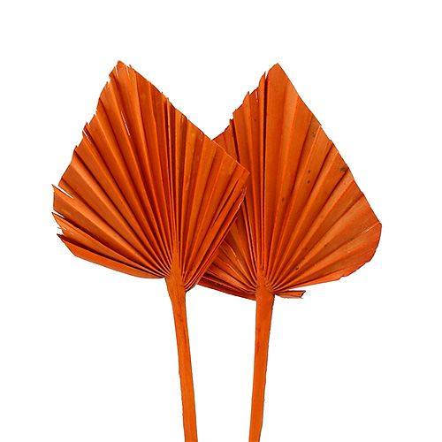 Palmspear mini orange 100 pièces