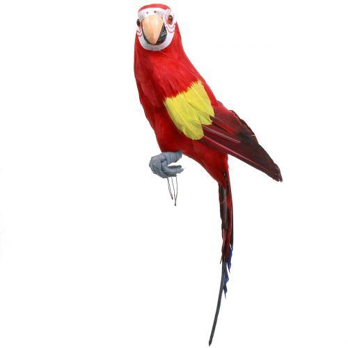 Deco Perroquet Rouge 44cm