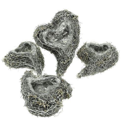 Cœur de plante vigne 15cm x 23cm x5cm blanc 4pcs