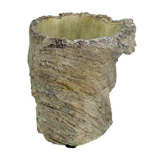 Cache-pot tronc d'arbre Ø11.5cm H14cm 2pcs