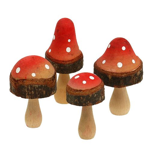 Mélange de champignons en bois  5,5 – 8 cm 8 p.