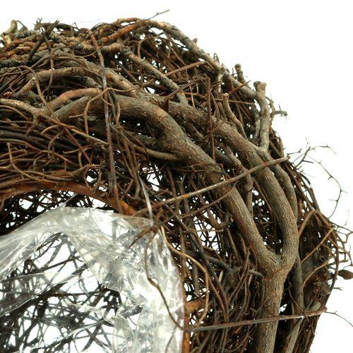 Plante de vigne coeur nature 15cm x23cm x5cm 4pcs