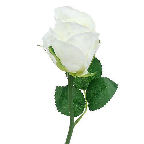 Rose blanche Ø6cm L30cm 6P