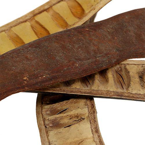 Gousses Scaletta naturelles 25cm - 50cm 25pcs