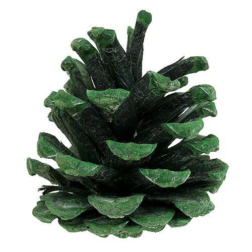 Cônes de pin noir vert givré 5-7 cm 1 kg