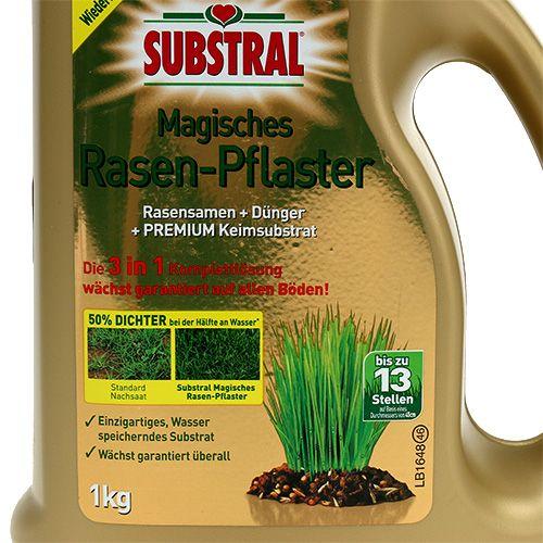 Pavage Substral Magical Lawn 1000g NOUVEAU