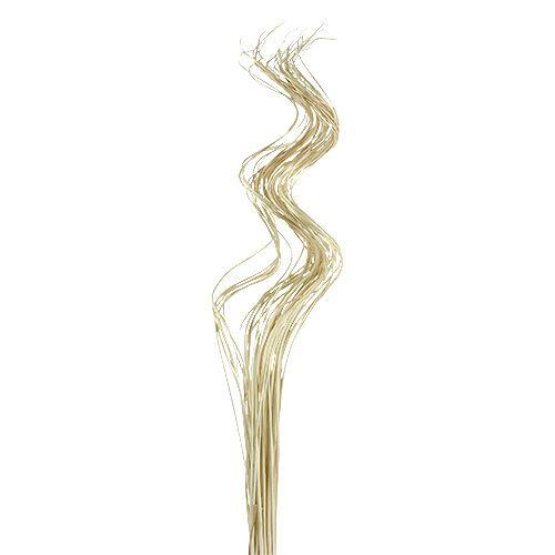 Tiges Ting Ting ondulées et blanchies 60 cm 40 p.