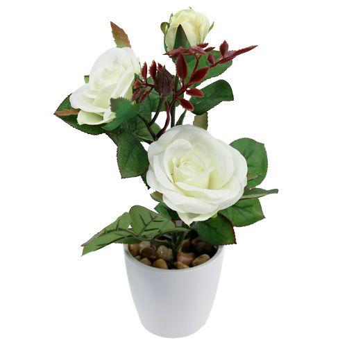 Décoration de table rose blanche en pot 23 cm