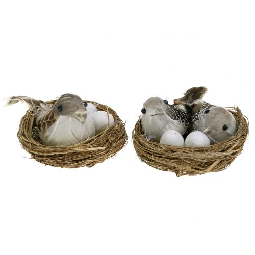 Nid avec œufs et oiseaux 6P