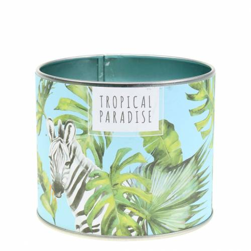 Bougie parfumée en boite Rainforest Blue Ø9.5cm H8cm