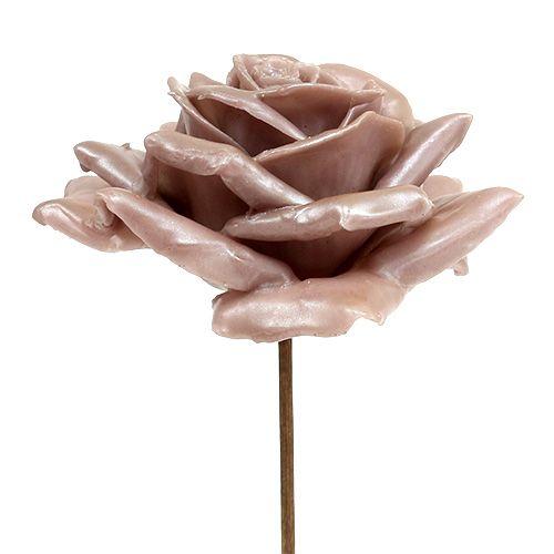 Roses de cire en champagne Ø10cm 6P