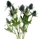 Chardon Fleur Artificielle Bleu 70cm