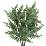 Branche de genévrier artificiel vert 36cm 4pcs