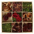 Mélange d'éléments exotiques couleur terre cuite