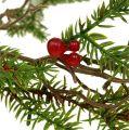 Guirlande de sapins aux baies vertes, rouges L119cm